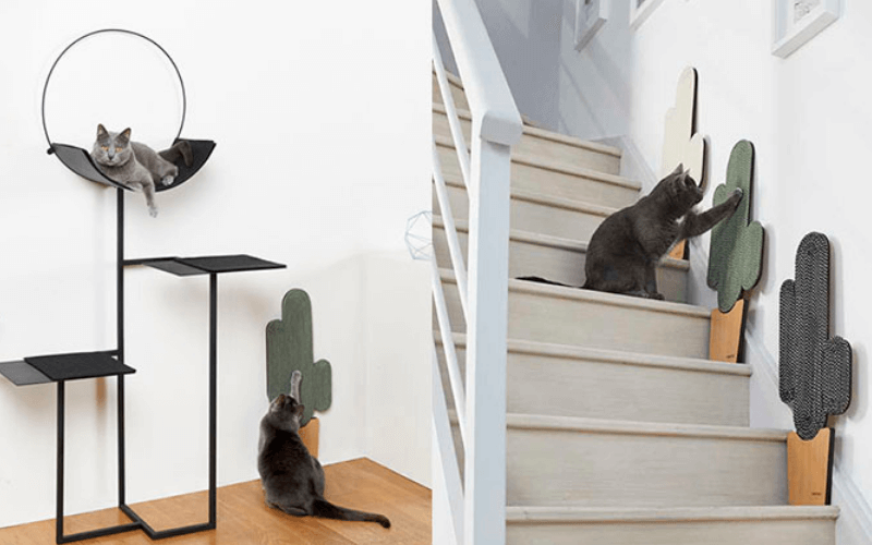 drapaki dla kota - kot drapie meble