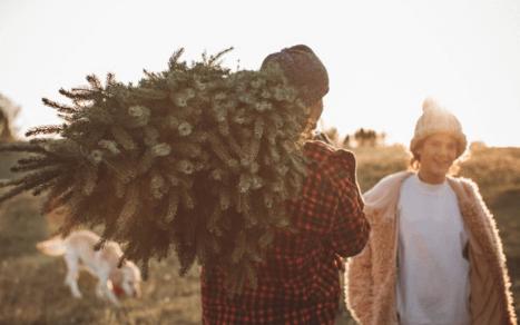 Choinka w 2018 r., czyli trendy i tradycja