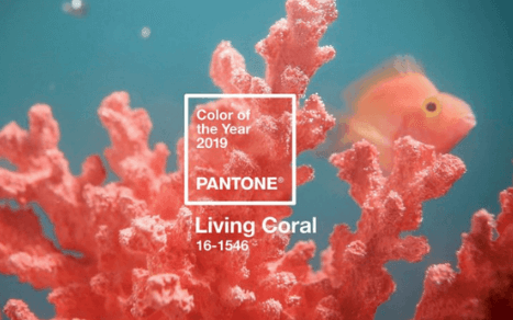 Kolor roku 2019 Living Coral Pantone